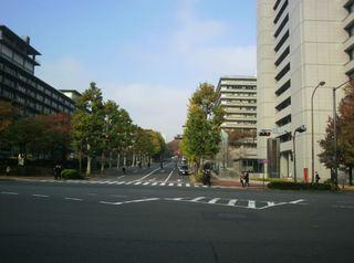 桜田通り.JPG